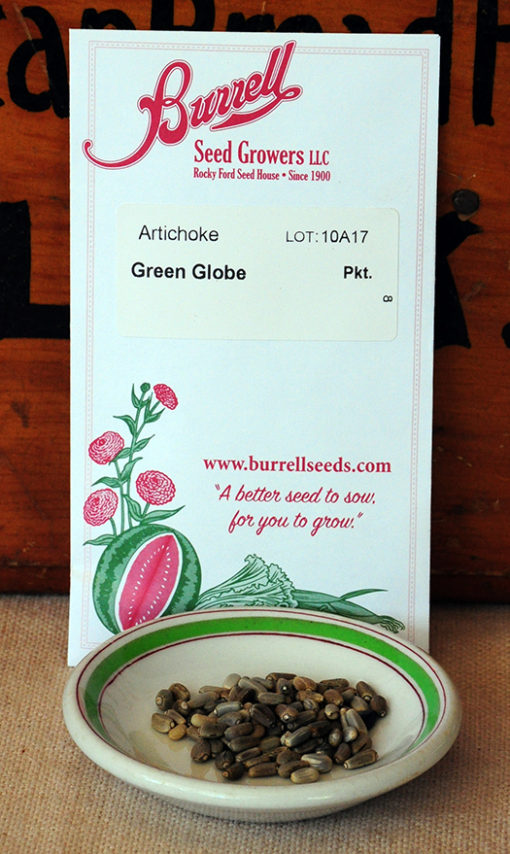 Green Globe Artichoke Seeds