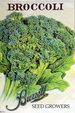 Heirloom Broccoli Seeds