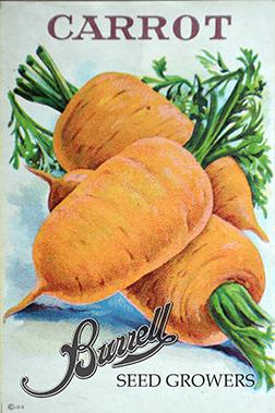 Carrots Pkt 2