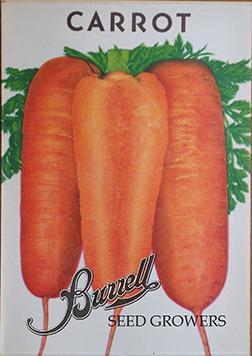 Carrots Pkt
