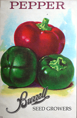 Cherry Peppers 2