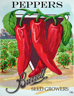 Chilis Red