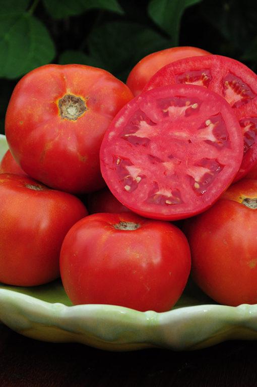 DVB 2121 Tomato Seeds