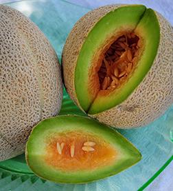 Eden Gem Cantaloupe seeds