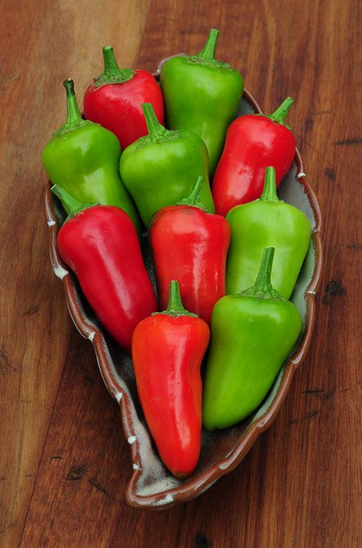 Chile Pepper Fresno Burrell Seeds