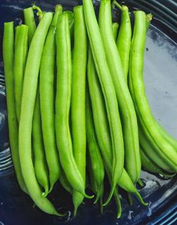 Green Beans 8