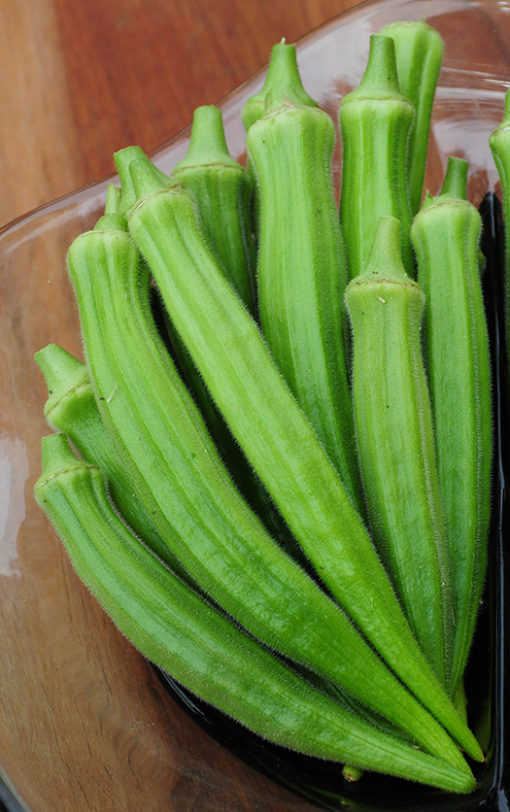 Perkins Long Pod Okra Seeds
