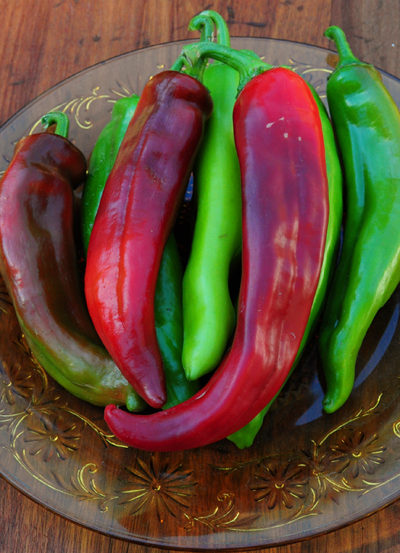 Sonora Chili Pepper Seeds