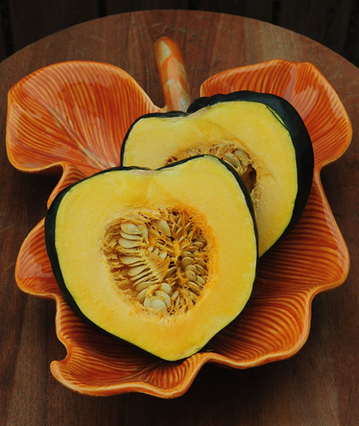 Taybelle Acorn Squash Seeds