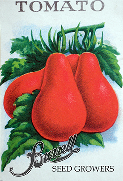 Tomato Red Pear