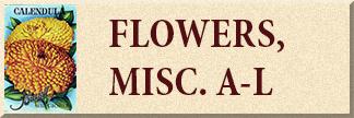Miscellaneous Flowers A-L