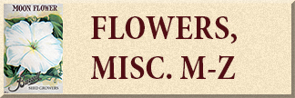 Miscellaneous Flower Seeds