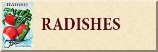 Radish Seeds