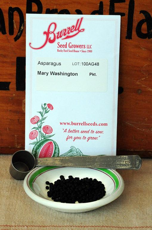 Mary Washington Asparagus Seeds