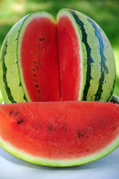 Heirloom Dixie Lee Watermelon Seeds